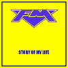 FM - Story Of My Life - Single
